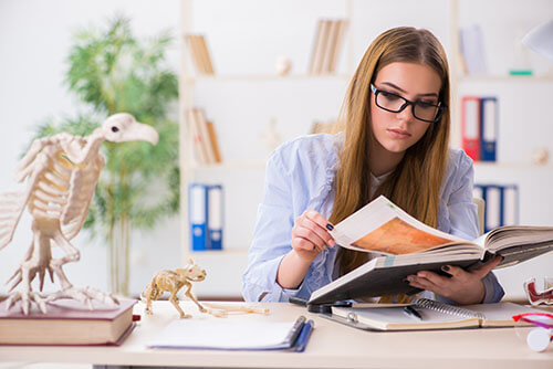 My-Jopportunity-Jobmagazin Kategorie Studium - Frau studiert